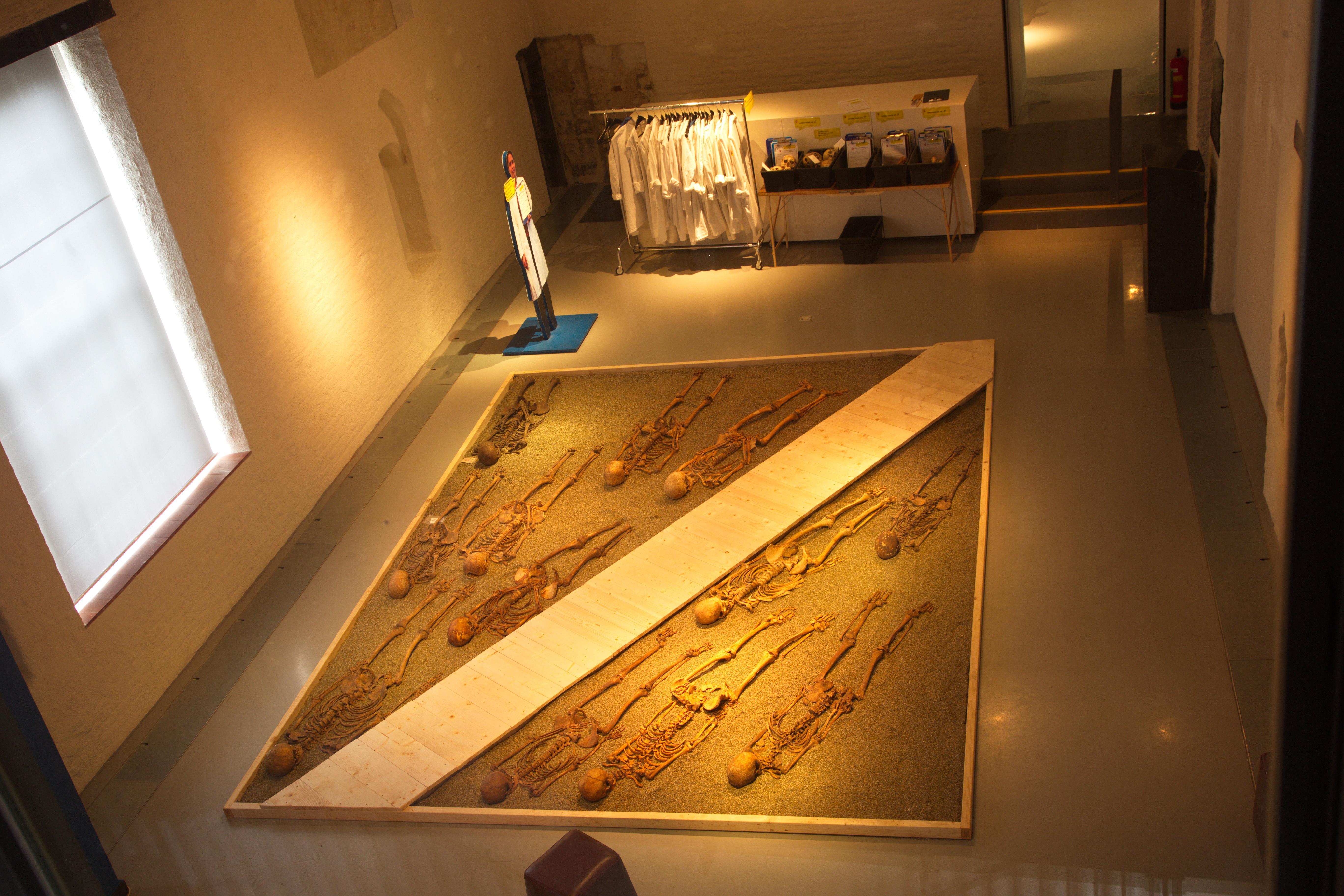 Tentoonstelling Cold Cases in Museum Flehite (2016)